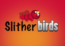slither-birds